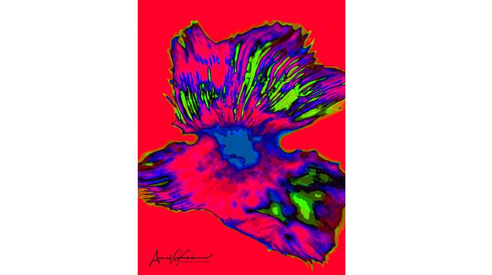 Anne U. Kerber – HistoPopArt 2020 – FlowerPower – Virtuelle Galerie