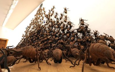 Magische Räume – Chen Zhighuang – Osthaus-Museum, Hagen