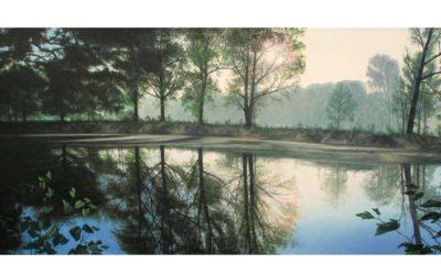 Wald – Wege – Bäume  –  Ölgemälde von Jürgen Schmitz – Virtuelle Galerie